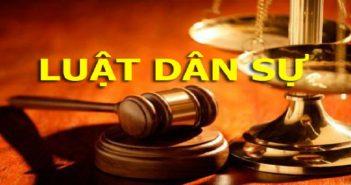 Bộ luật dân sự sửa đổi, bổ sung theo Nghị quyết số 51/2001/QH10 ngày 25 tháng 12 năm 2001 của Quốc hội khóa X kỳ họp thứ 10