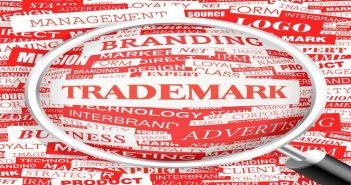 Dịch vụ tra cứu nhãn hiệu hàng hóa trực tuyến