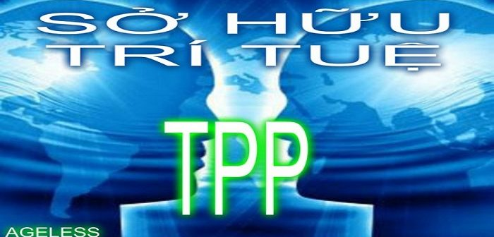 Quy định về Vi phạm quyền sở hữu trí tuệ trong TPP